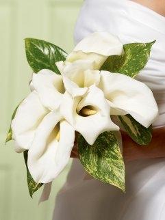 Interflora Wedding Collection