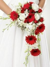 Crimson Gerbera & Orchid Shower Bridal Bouquet *FOR BRIDESMAIDS*